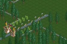 Forest Frontiers RCT1