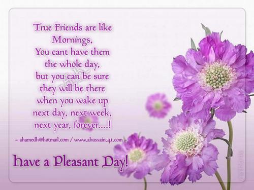 File:Vicky-Karen-Our-true-friendship-keep-smiling-10489453-500-375.jpg