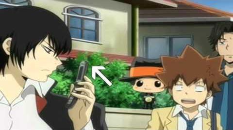 Tsuna's Life, Like a Boss.