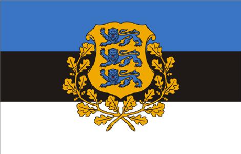File:Estonian presidential flag.png