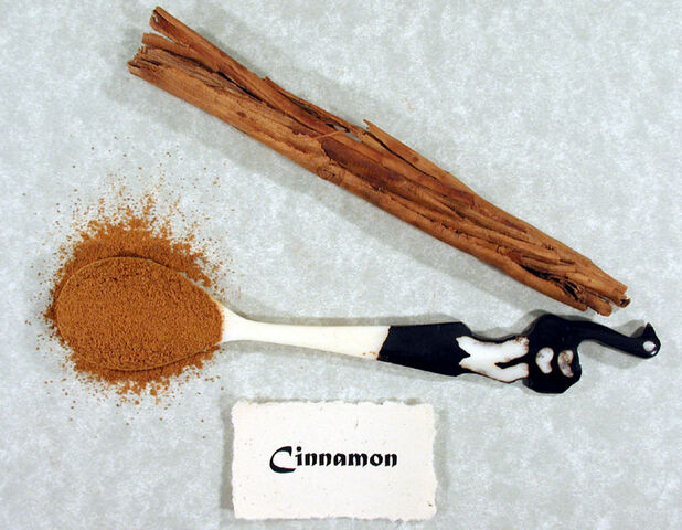 File:Cinnamon.jpg