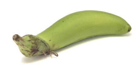 File:Green goddess eggplant.jpg