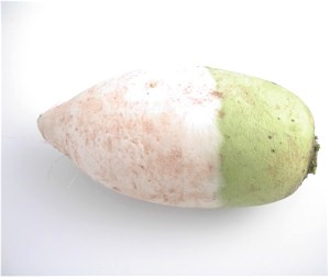 File:Korean radish.jpg