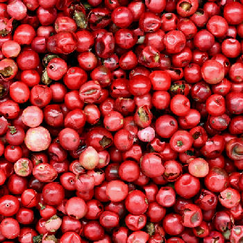 File:Pink-peppercorns.jpg