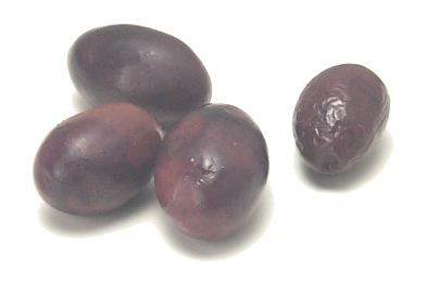 File:Empeltre olives.jpg