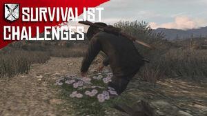 Rdr survivalist challenges