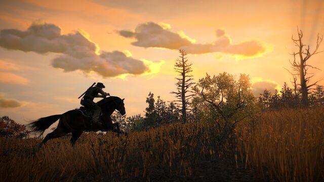 File:Rdr horse07.jpg
