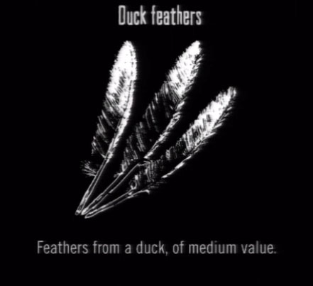 File:Animals Duck Feathers.jpg