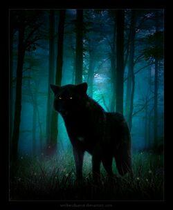 Shadowwolfie