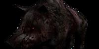 Undead Boar