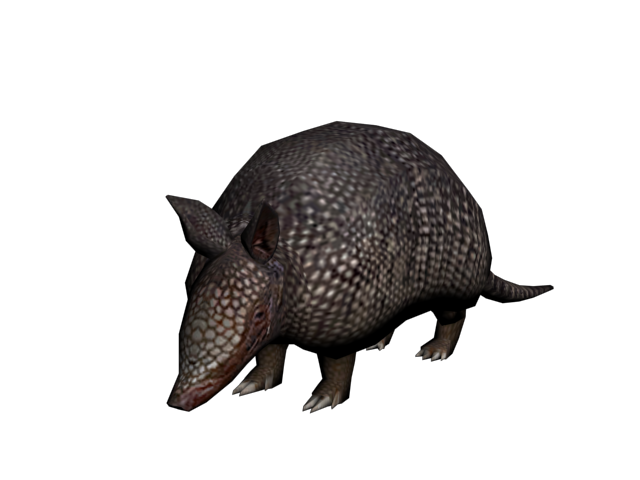 File:Armadillo.png