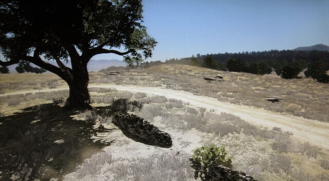 File:Rdr broken tree.jpg