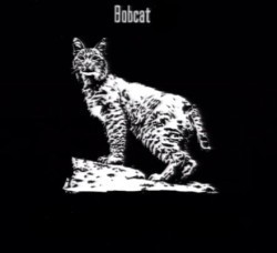 File:250px-Animals Bobcat Fur.jpg
