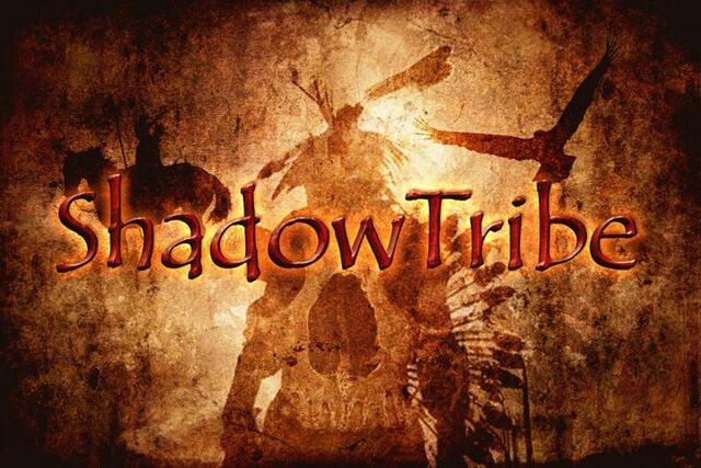 File:ShadowTRIBE4.jpg