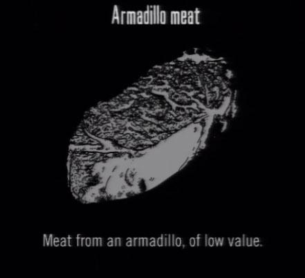 File:Animals Armadillo Meat.jpg