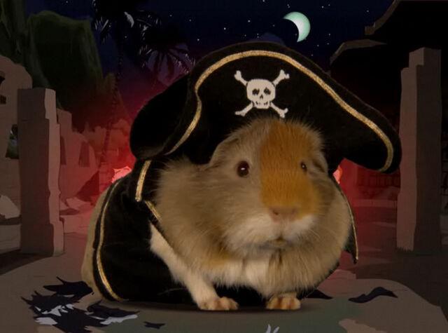 File:Arrrg guinea pirat.jpg