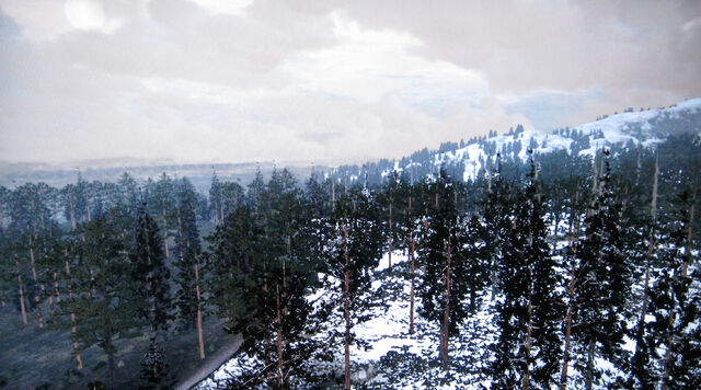 File:Rdr tall trees00.jpg
