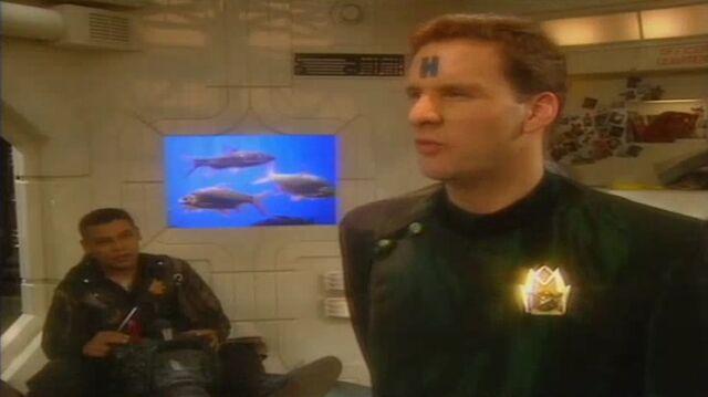 File:Officer's Quarters Fish.jpg