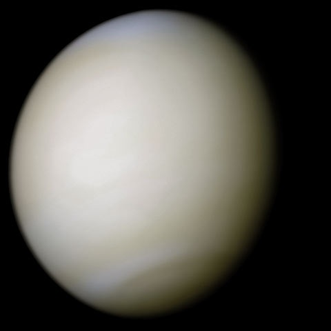 File:Venus-real color.jpg