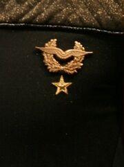 Space Corps Super Infinity Fleet Badge