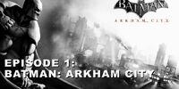 Batman: Arkham City (3152)