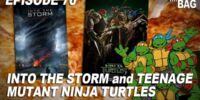 Into the Storm and Teenage Mutant Ninja Turtles (7805)