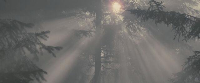 File:Trailer2-03.jpg