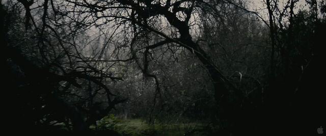 File:Trailer2-02.jpg