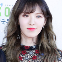 Wendy 170603 Dream Concert Red Carpet 2