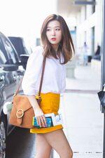 Seulgi at the Airport