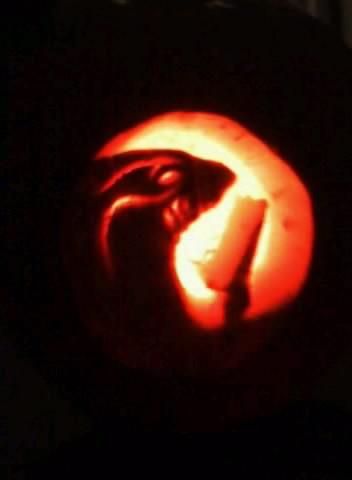 File:Taggerung Pumpkin.jpg