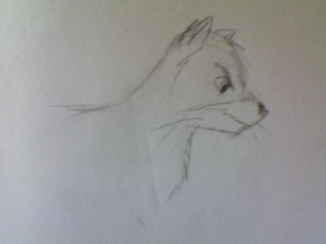 File:Felldoh Doodle.jpg