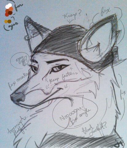 File:Fox Sketch.jpg