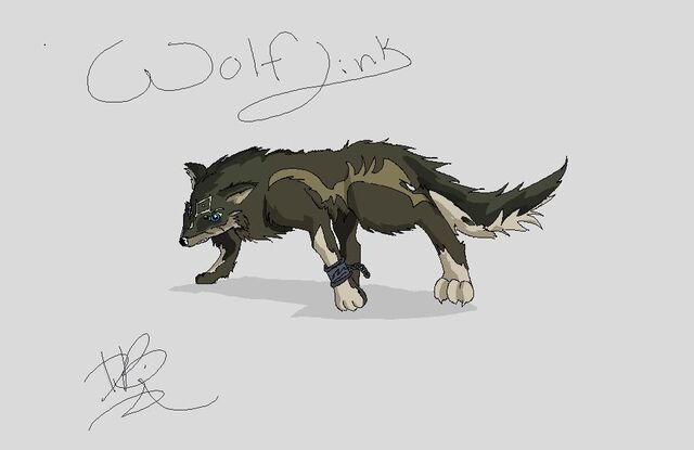 File:Wolf link for wiki 2.jpg