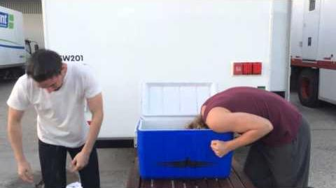 Toby & Torrance do the Ice Bucket Challenge