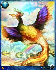 Rainbow Bird0