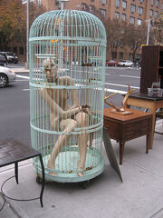 Mannequin in a Cage