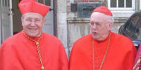Cardinal (Catholicism)/Vesture and privileges