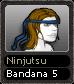 Ninjutsu Bandana 5