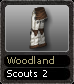 Woodland Scouts 2