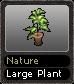 Nature Large Plant