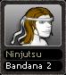 Ninjutsu Bandana 2