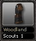 Woodland Scouts 1