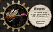 Rare Mimics Windrunner