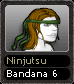 Ninjutsu Bandana 6