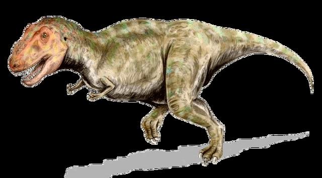 File:Tyrannosaurus BW.png