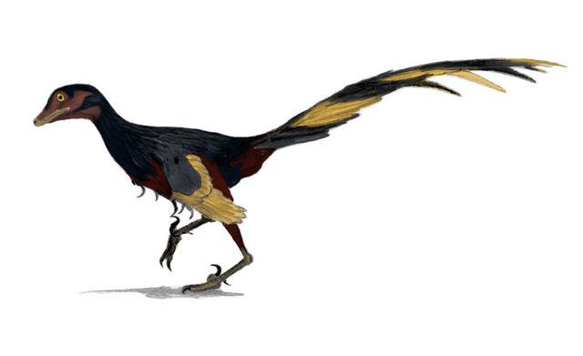 File:Jinfengopteryx.jpg