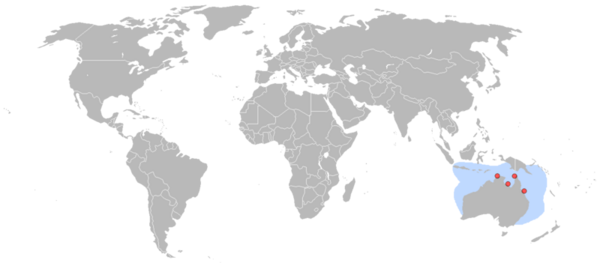 Map showing four nesting sites, spread across Australia's Northeast coast