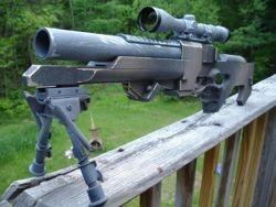 File:Real verpine rifle.jpg