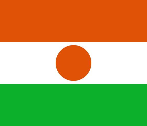 File:Flag of Niger svg.png